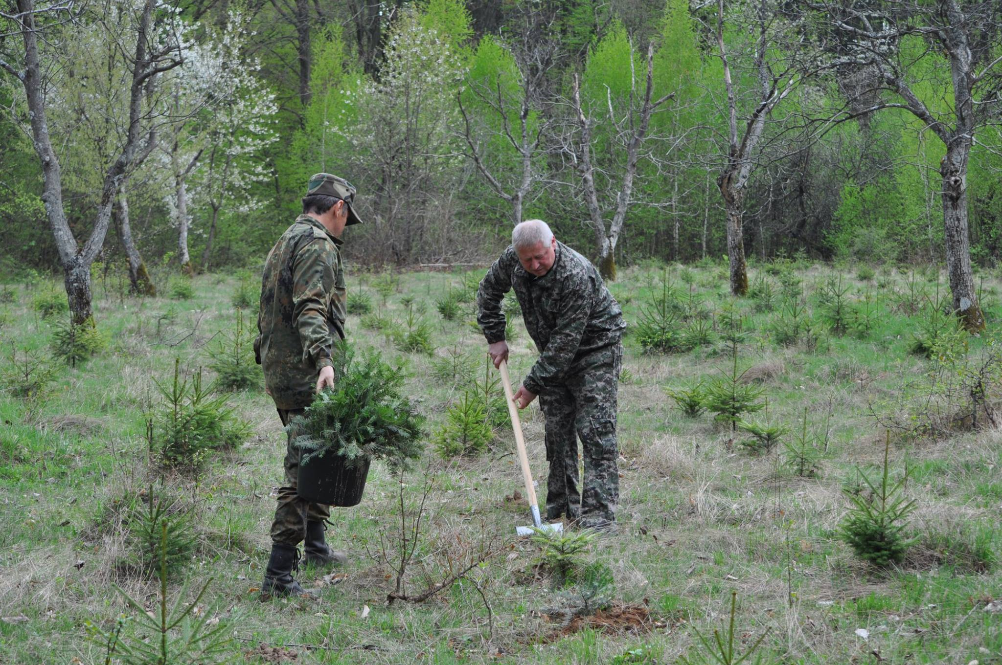 На Ужгородщині продовжується «лісова» акція. ФОТО