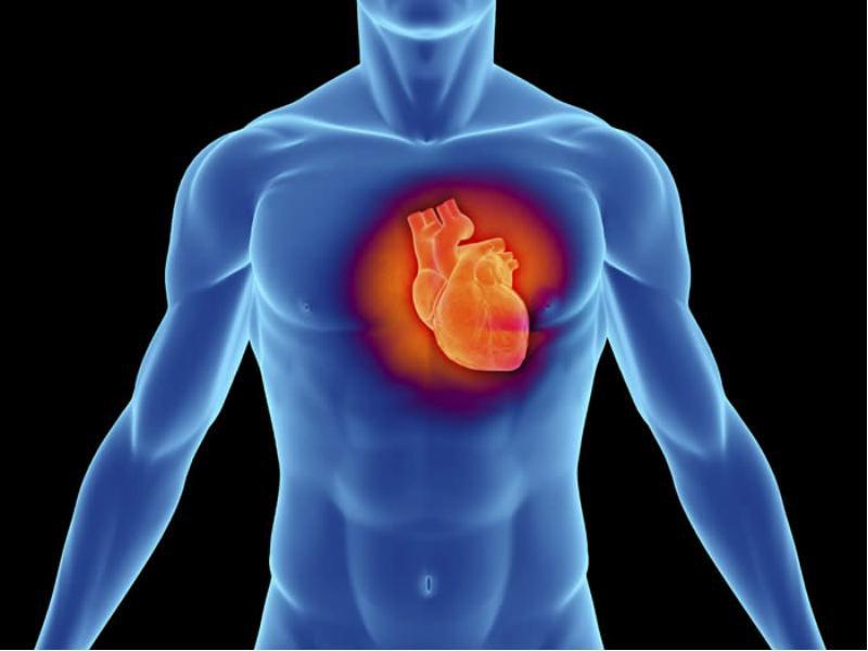 За минулий рік на Закарпатті зареєстровано 631 378 осіб, які хворіють на серцево-судинні захворювання