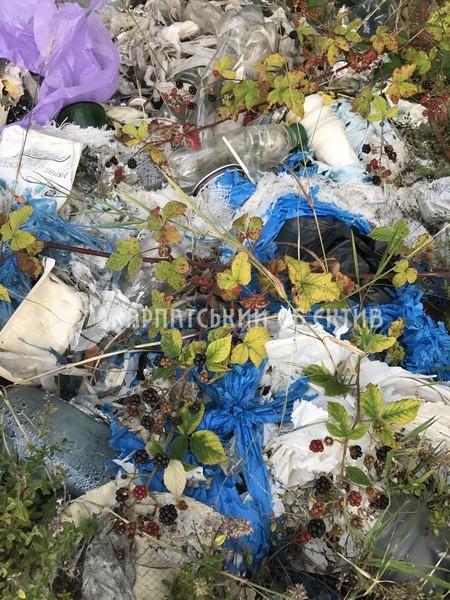 Чудову природу краю Мукачівщини завалюють сміттям
