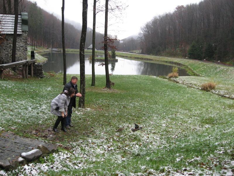 сніг3
