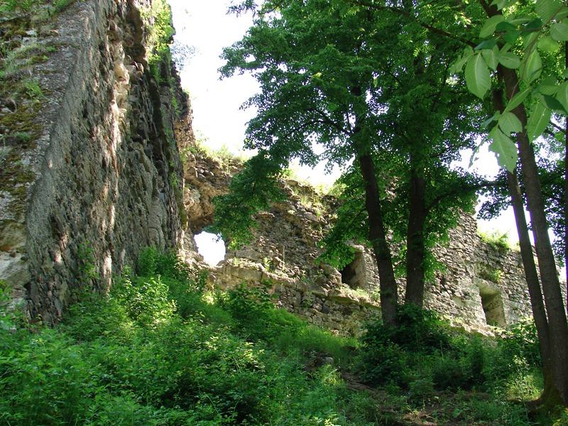 Хустський замок відреставрують? Небайдужі взялися за збереження історичної пам`ятки