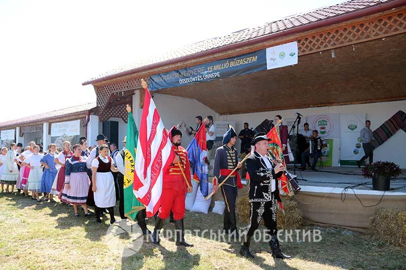 «15 мільйонів зерен пшениці»: на Берегівщині відзначили свято угорського хліба. ФОТО