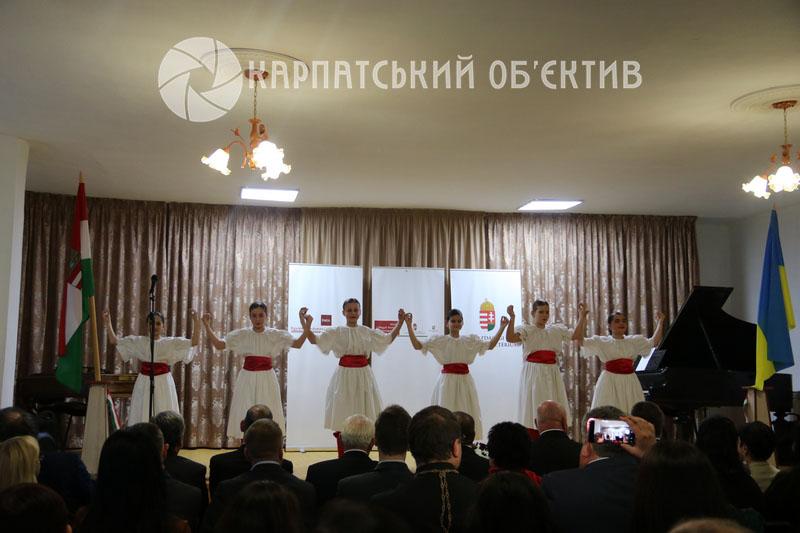 Хай лунає музика – на Виноградівщині відреставрували школу мистецтв. ФОТО