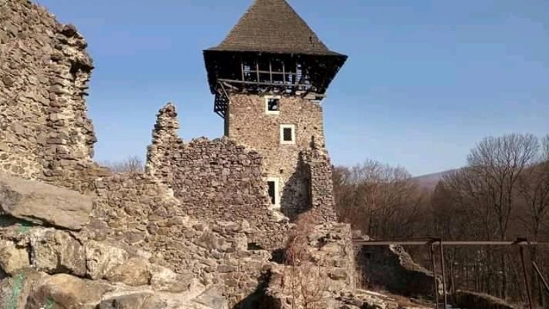 Замок, який міг би стати перлиною ЮНЕСКО, руйнується на очах. ФОТО